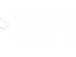 McQueen Animal hospital - Veterinarian Brampton